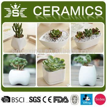 vasi per bonsai economici bianco piccolo economici vasi bonsai vaso di fiori di