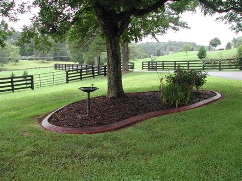 Landscape Edging Around Tree Roots Concrete Curbing