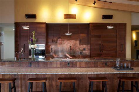 Dark Kitchen Cabinets With Backsplash Earthship Farmstead Contemporary Kitchen By Kaplan