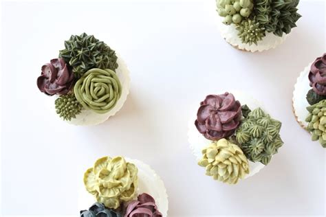 How To Propagate A Succulent Cookie And Kate - succulent cupcake garden eat cake be merry custom