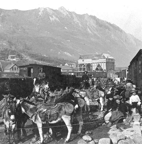 gallery of south mountain community library rich 228 rd the rich life of aspen mountain miner billy zaugg aspen