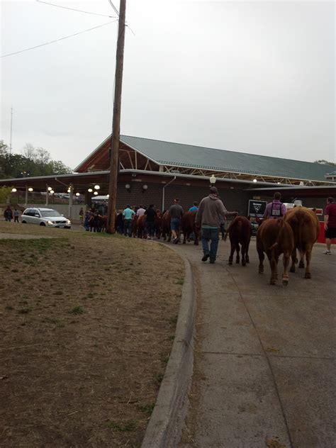 The Barn Show Iowa State Fair Lady Of Ag