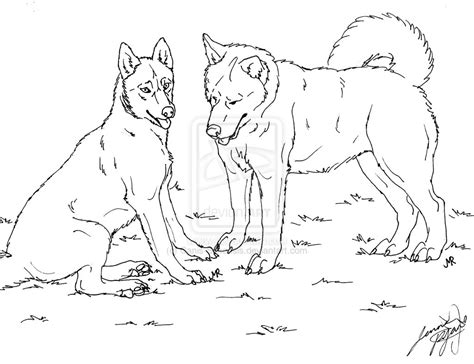 siberian husky coloring book stress relief coloring book for grown ups animal coloring book books siberian huskies lineart by canis simensis on deviantart
