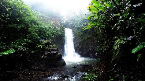 La Paz Waterfall Gardens Costa Rica by La Paz Waterfall Gardens In Costa Rica Alajuela