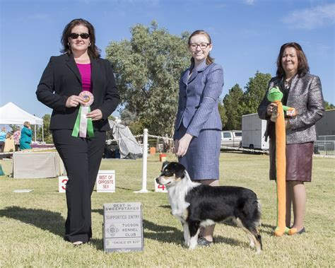 kennels tucson 2015 usasa specialty tucson kennel club results sahuaro state kennel club