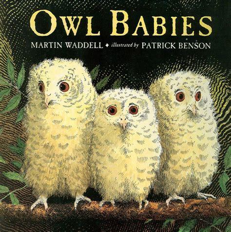 owl picture book owl babies unit study homeschool jabber