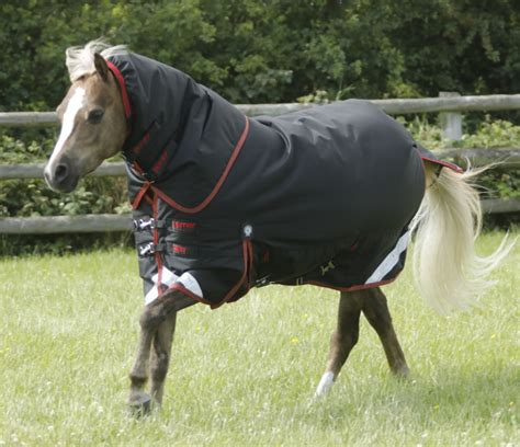 pony turnout rugs pony titan 450 turnout rug with neck cover