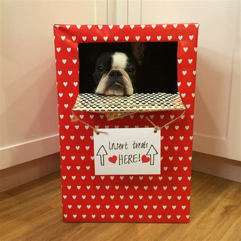 diy valentines box we tried 9 diy s crafts with our dogs here s