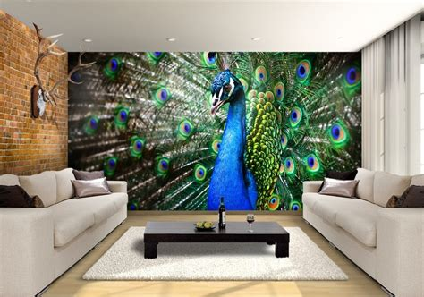 wallpaper for walls noida inspiring peacock beauty for your home