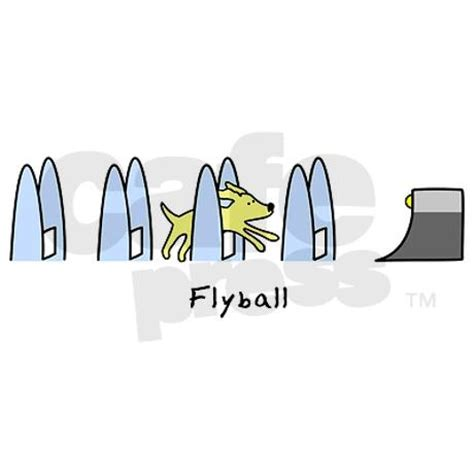 how to your for flyball 10 images about flyball on running trains and watches