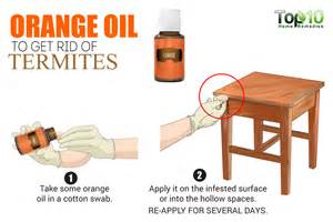 what kills termites home remedies how to get rid of termites top 10 home remedies