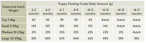 puppy feeding chart by weight age canagan food canagan grain free food free run chicken