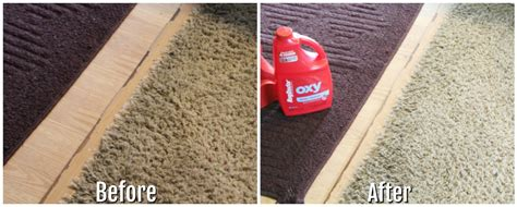 rug doctor before and after before and after rug doctoring rug doctor