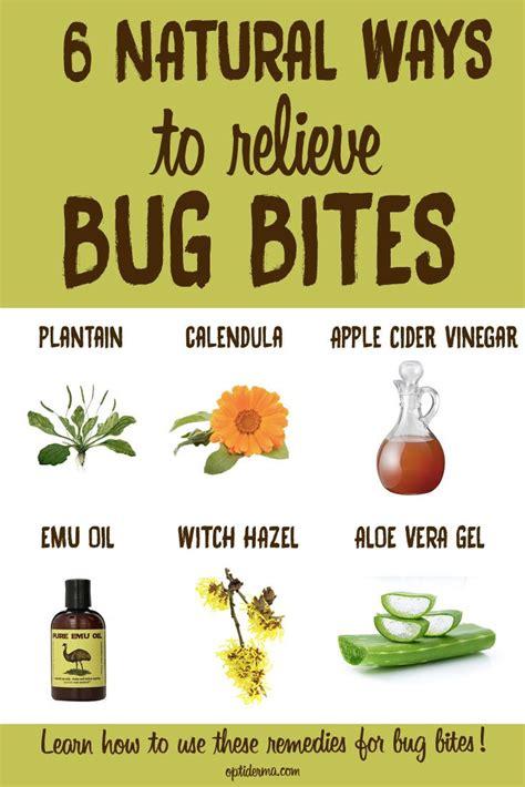 list  natural remedies  relieve  symptoms  bug