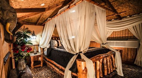 theme hotel miami jungle suite private adult hotel