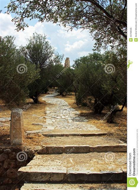 bei giardini bei giardini antichi al fondo dell acropoli a atene