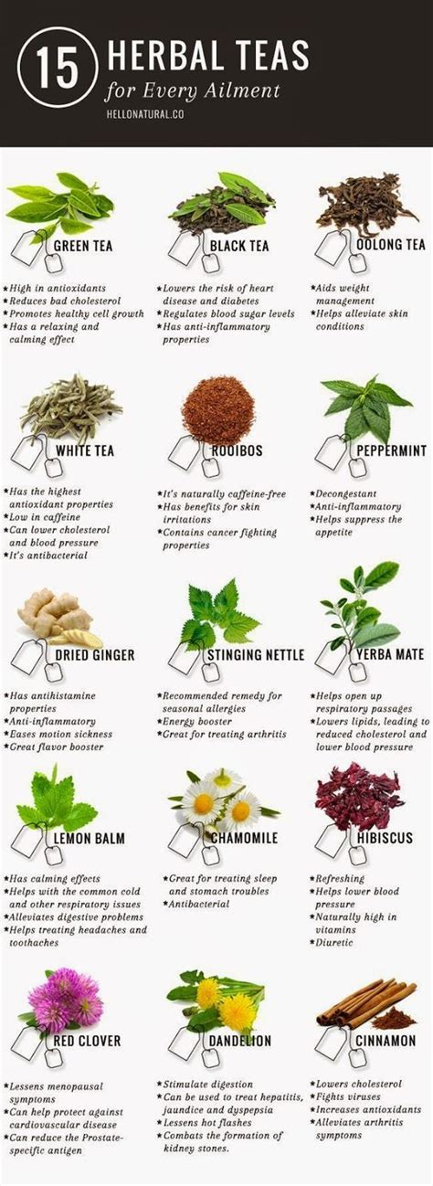 5 Day Tea Detox by 1000 Ideas About 5 Day Detox On 7 Day Detox