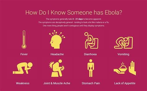 how do i know if i have a bench warrant ebola virus disease frequently asked questions