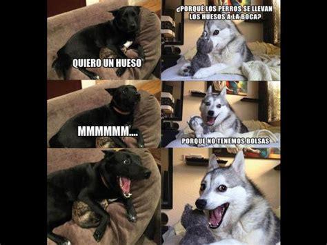 Bad Dog Meme - bad pun dog meme pictures to pin on pinterest pinsdaddy