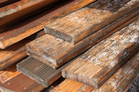 Mold On Hardwood Floors: Safety and Preparing The Removal