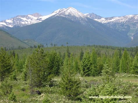 Cabinet Mountains Montana by The Cabinet Mountains In Northwest Montana Photos Of The