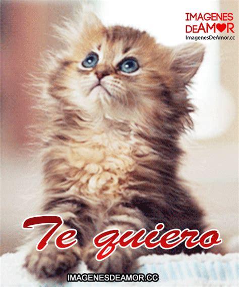 imagenes de rapunzel con frases de amor gif imagenes de tiernos gatitos para whatsapp imagenes tiernas