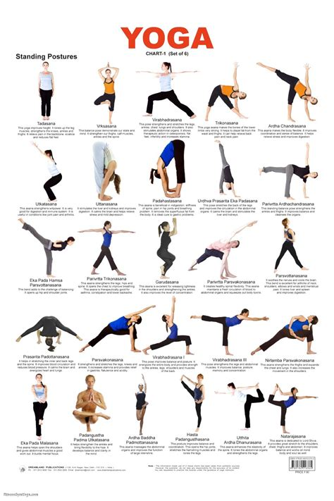 the best 110 poses for practice guide and tips for improving your health books names for poses work out picture media