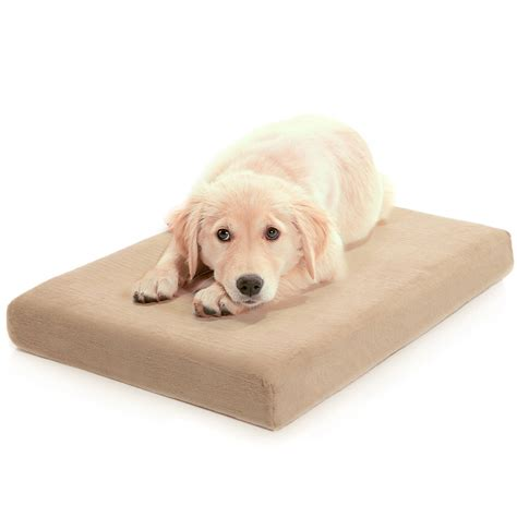 dog beds for small dogs best dog beds for small dogs make sure your pet howls