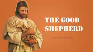 good shepherd jesus identified good shepherd
