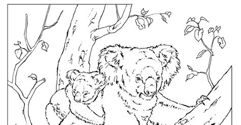 National Animal Colouring Pages National Geographic Coloring Pages