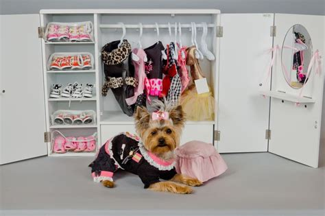 yorkie fashion i need more room for my clothes fashion yorkie polydog picoftheday