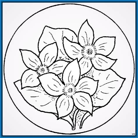 imagenes flor mandala mandalas de flores de bach para colorear archivos