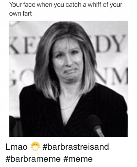 Barbara Meme - your face when you catch a whiff of your own fart lmao
