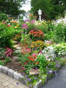 flowers back yard gardens