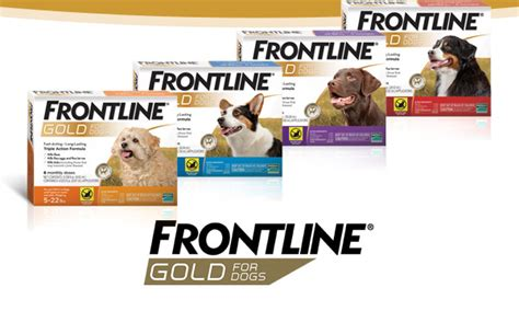 frontline gold for dogs merial digital assets frontline gold for dogs