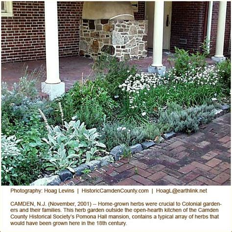 Ideas For Window Treatments 18th Century Horticulture Herb Gardens