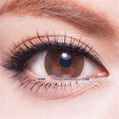 Softlens Geo Holicat Gray geo brown circle lenses colored contacts
