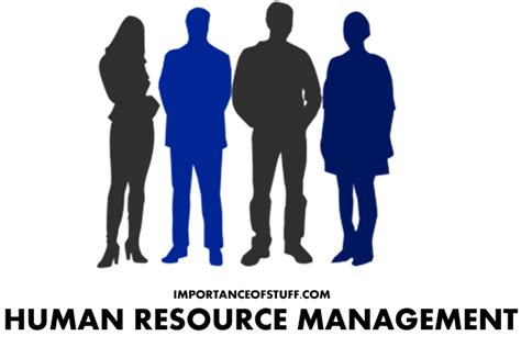 human resource management dissertation 5 simple facts about thesis on human resource described