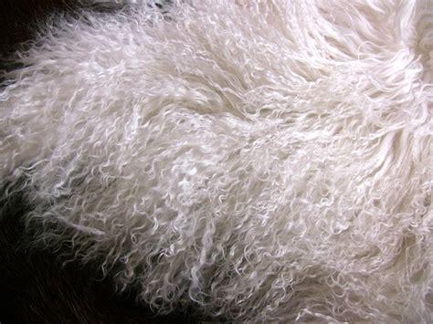 milch im teppich dekoelement schaffell ein echtes allround talent m 246 bel