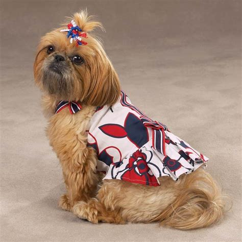 all american dogs all american sundress baxterboo