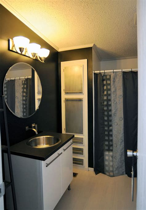 Zebra Bathroom Ideas Ny Double Wide With Great Manufactured Home Remodeling