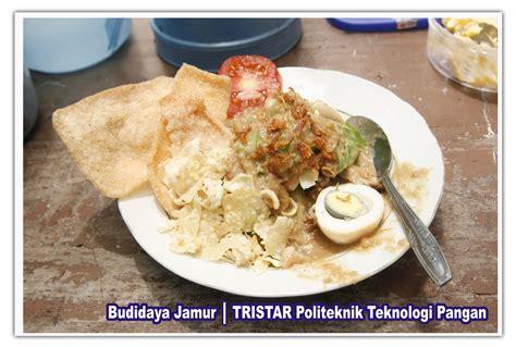 Bibit Jamur Tiram Pontianak pelatihan usaha budidaya jamur tiram info 085733691548