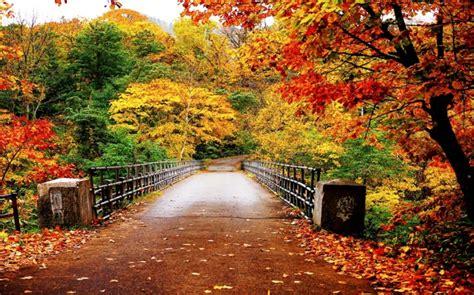 Patch Per Te Milan Farewell Maldini For Original Jersey le plus beau paysage d automne voyez nos propositions archzine fr
