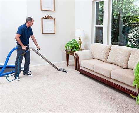in home upholstery cleaning carpet cleaning services and water damage cleaning