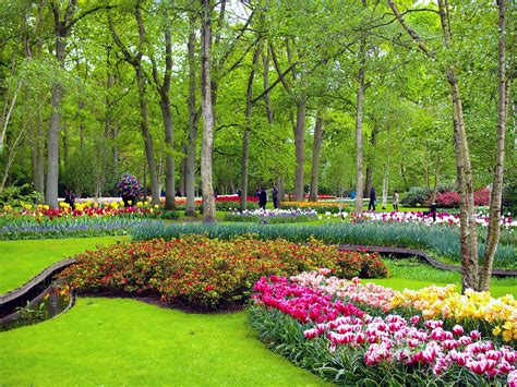 the most colourful day trip from amsterdam keukenhof gardens