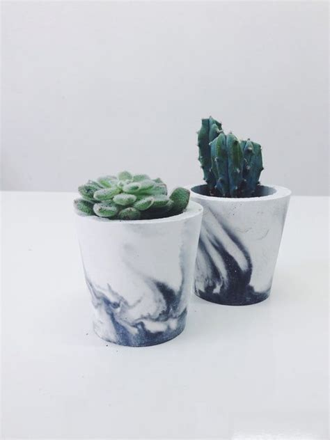 cactus planters creative diy cactus planters you should not miss craft coral
