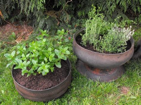Inside Out Tire Planter by Crafty Gnome How To Make Inside Out Tire Planters