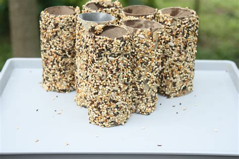 Recycle Toilet Paper Rolls Crafts - recycled toilet paper roll crafts bird feeder