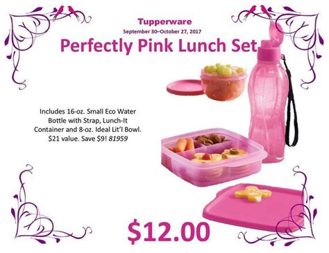Pink Lunch Set by 11 Best On The Go Images On Tub Tupperware