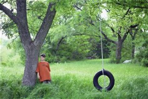 a tire swing hanging from a branch what size tree limb is good for hanging a tire swing